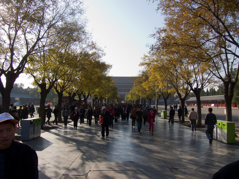 China-Beijing-Forbidden City - Picture number 200. The autumn leaves are everywhere. Excellent weather today, despite it being 2 degrees when I set off, its already about 15C an hou