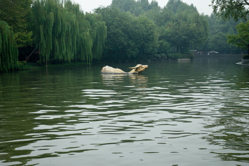 China-Hangzhou-West Lake-Fog - 'The bovine whilst inept in pursuits most buyoant is forever triumphant as the everlasting force of nourishment'
