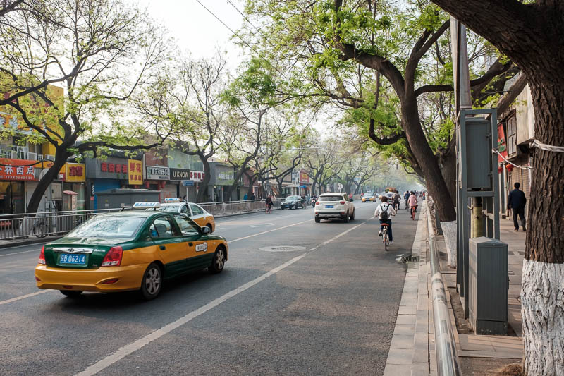 China-Beijing-Zhengzhou-Bullet Train - Here is the street scene outside of Cafe Bene. The trees here will form a complete canopy over the street soon, lots of streets in Beijing are like th