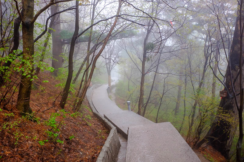 China-Hiking-Rain-Huashan-Soldiers Path - I now tried to find another way down, hunting through the fog.