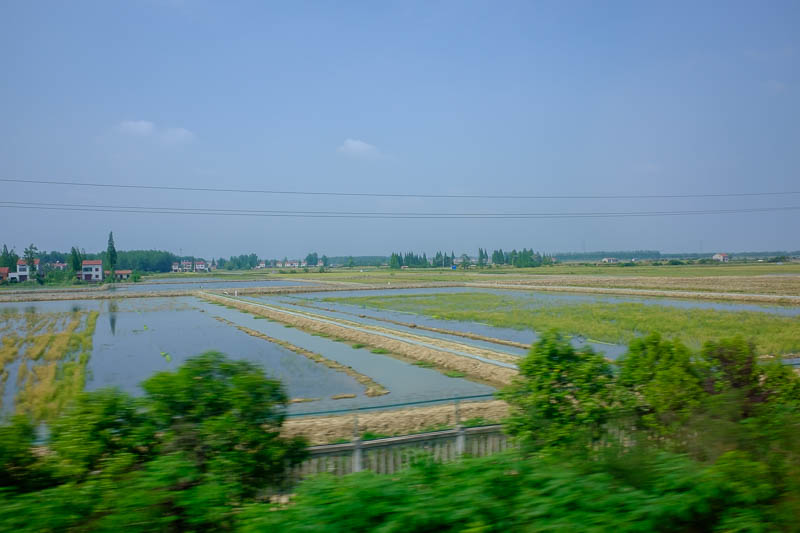 China-Chongqing-Wuhan-Bullet Train - The second half of the journey has been very flat so far, with an inland sea of farm land, all very green. A bit more pollution came back.