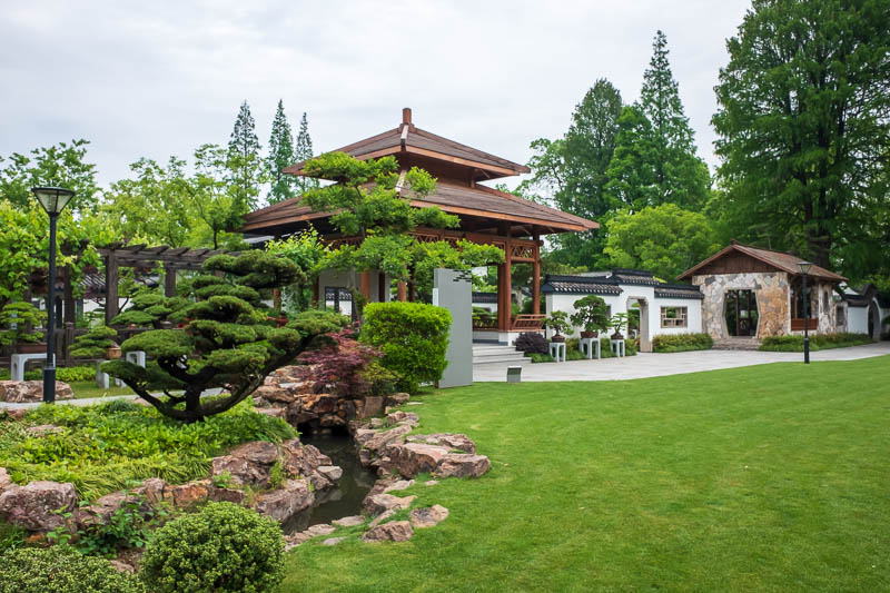China-Shanghai-Botanic Garden-Flowers - A very large very formal very new Chinese garden full of bonsai.
