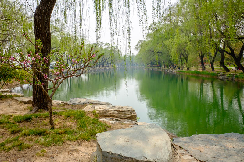 China-Beijing-Summer Palace - A bit more of the green lake.