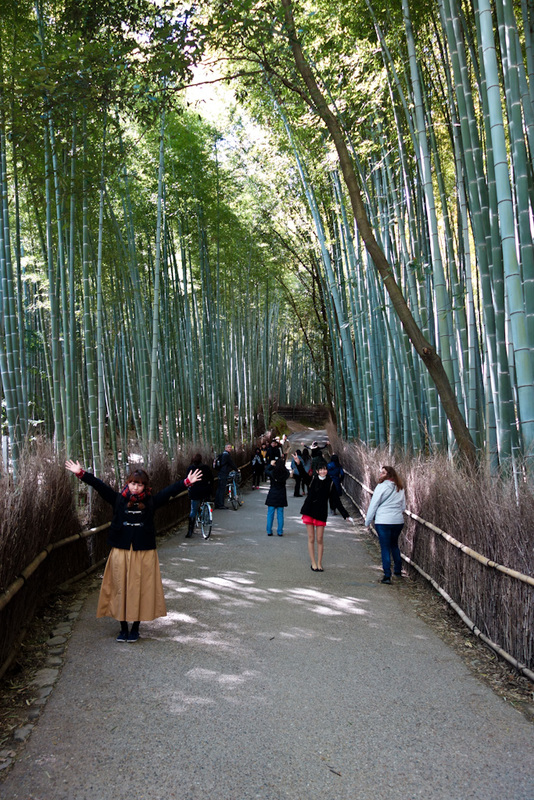 Japan-Kyoto-Arashiyama-Hiking-Bamboo-Monkeys - The bamboo sea is another of the attractions here. Its not huge. Its tiny compared to the one in Chengdu or wherever I went last trip. But I managed t