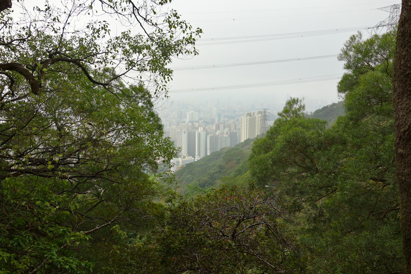 Hong Kong-Hiking-Lion Rock-Fog - I took this photo because I was worried as I got higher I would have no view at all as there would be fog.
