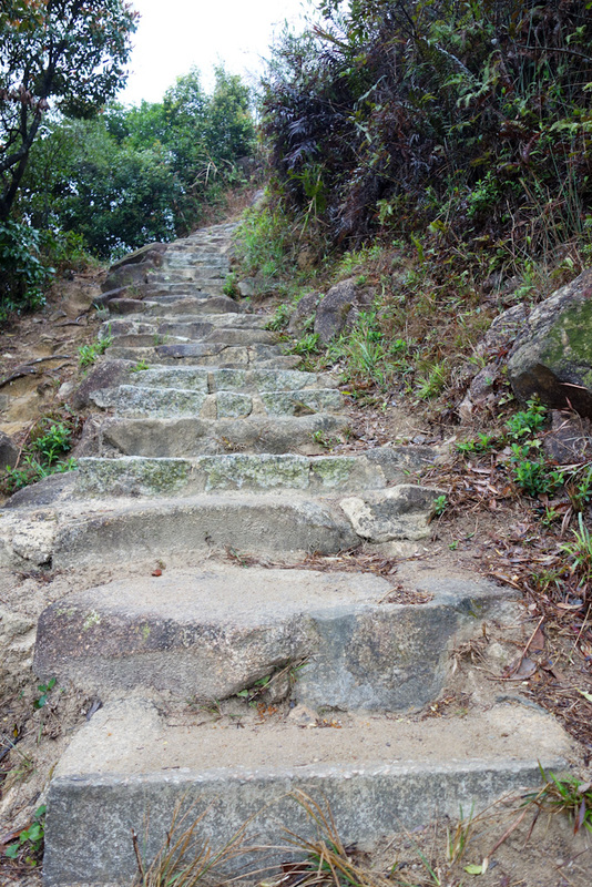 Hong Kong-Hiking-Lion Rock-Fog - The path was well built with steps, but poorly signposted. I thought I was heading in the right general direction but theres other paths going off all