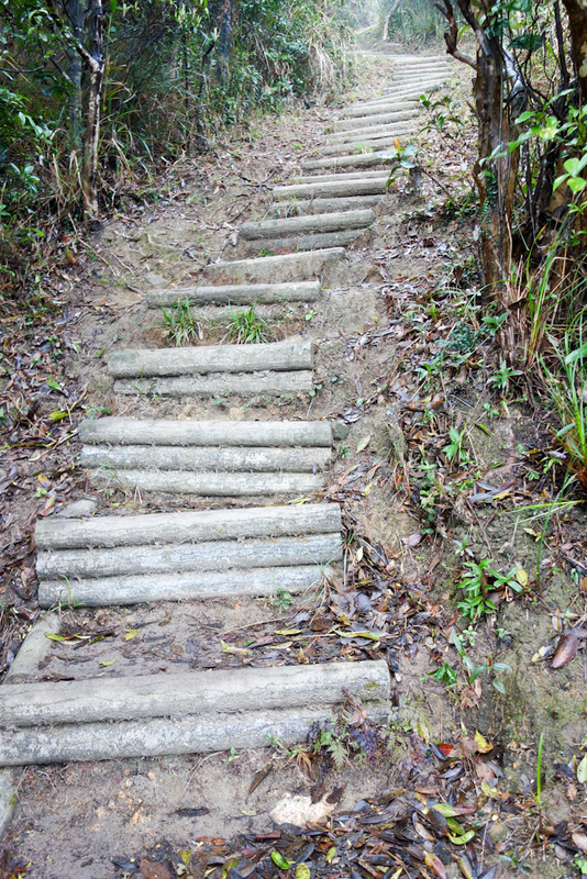 Hong Kong-Hiking-Lion Rock-Fog - Eventually I found the very steep track to the rock formation summit. These are some of the steepest stairs ever, it really was like climbing a ladder