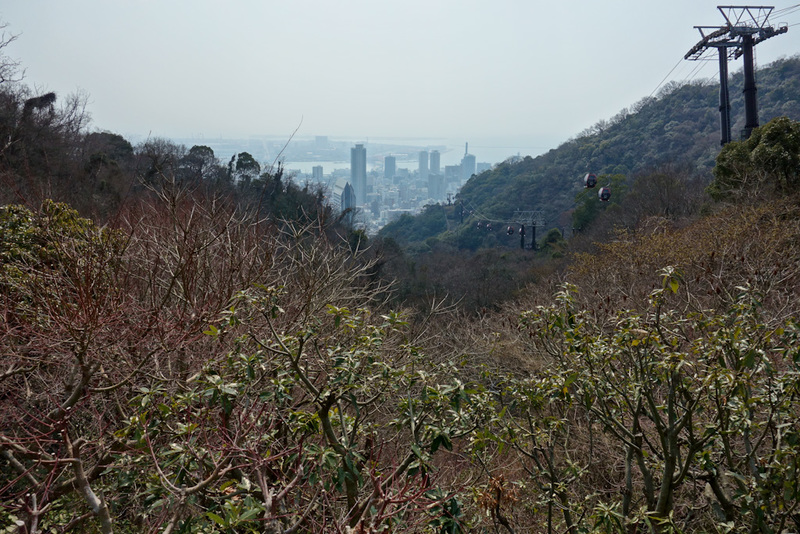 Japan-Kobe-Hiking-Garden-Takaoyama - Getting nearer the top now and I find myself at a herb garden.