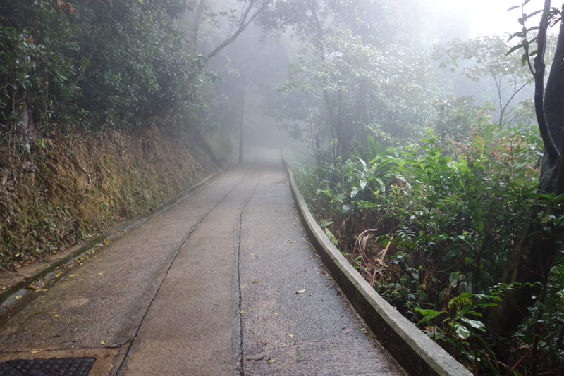 Hong Kong-The Peak-Fog - This used to be a road for cars, coming down in old cars would have been very treachorous.