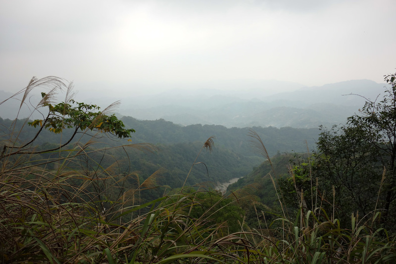 Taiwan-Taichung-Hiking-Dakeng - I knew I was heading down, but I elected to choose a different track down. Good plan as it was better maintained, although still log ladder. The only