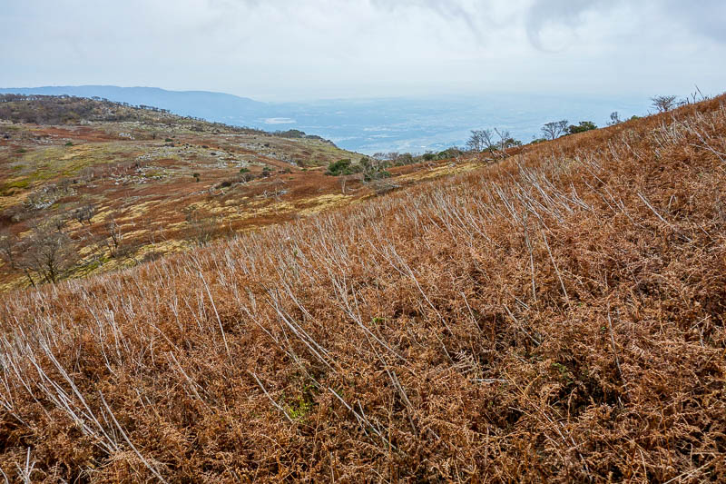Japan-Nagoya-Hiking-Fujiwaragatake - Grey day on a bald mountain