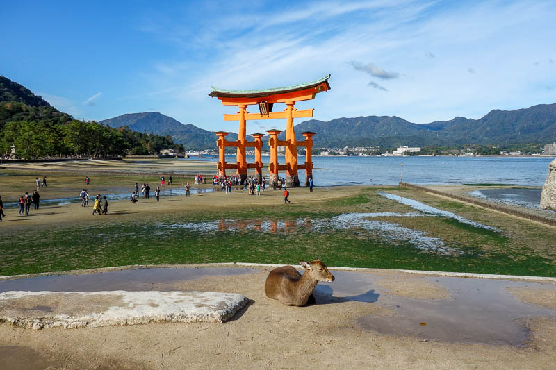 Japan-Hiroshima-Miyajima-Hiking-Mount Misen - Heres one of the top x scenic spots in all Japan! Top x because these lists are bullshit. The tide was out, it only becomes a scenic spot when its sur