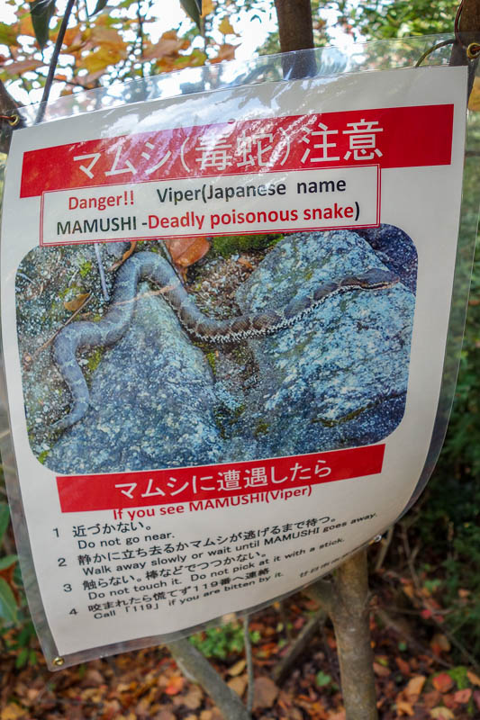 Japan-Hiroshima-Miyajima-Hiking-Mount Misen - Deadly snake warning! I have been wandering around the mountains not even on trails with gay abandon.