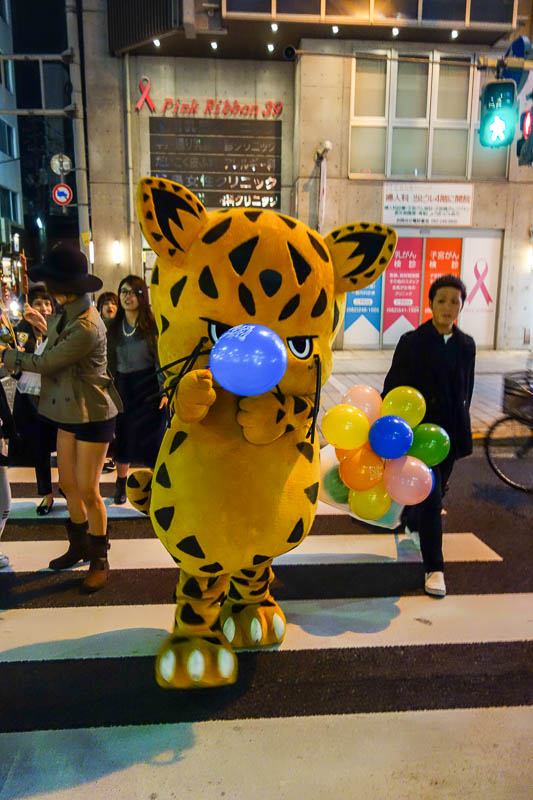 Japan-Hiroshima-Illumination-Food-Pasta - This cat attacked me with a balloon as I crossed the road.