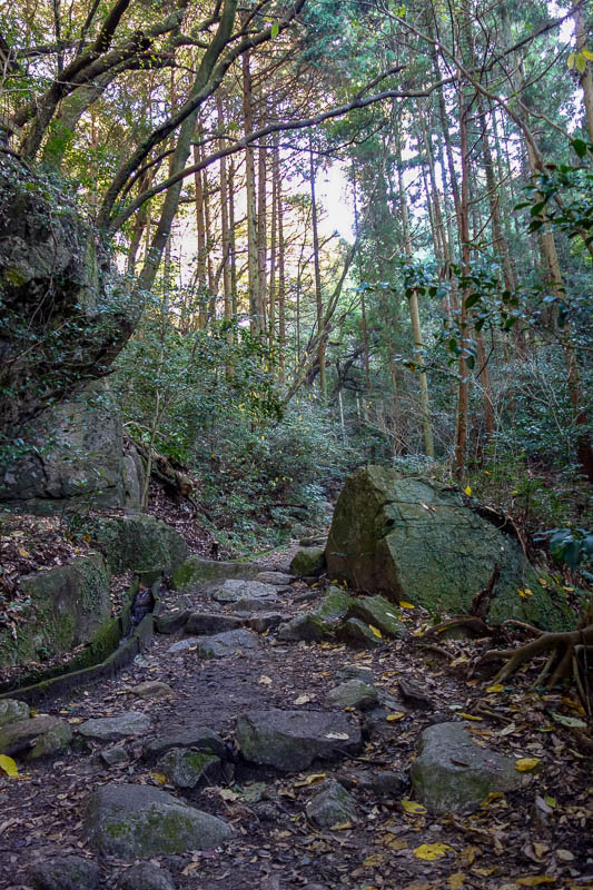 Japan-Fukuoka-Hiking-Mount Homan-Dazaifu - Time to hit the trail, it soon became giant rock steps.