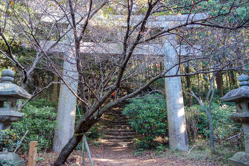 Japan-Fukuoka-Hiking-Mount Homan-Dazaifu - Every now and then, another gate.