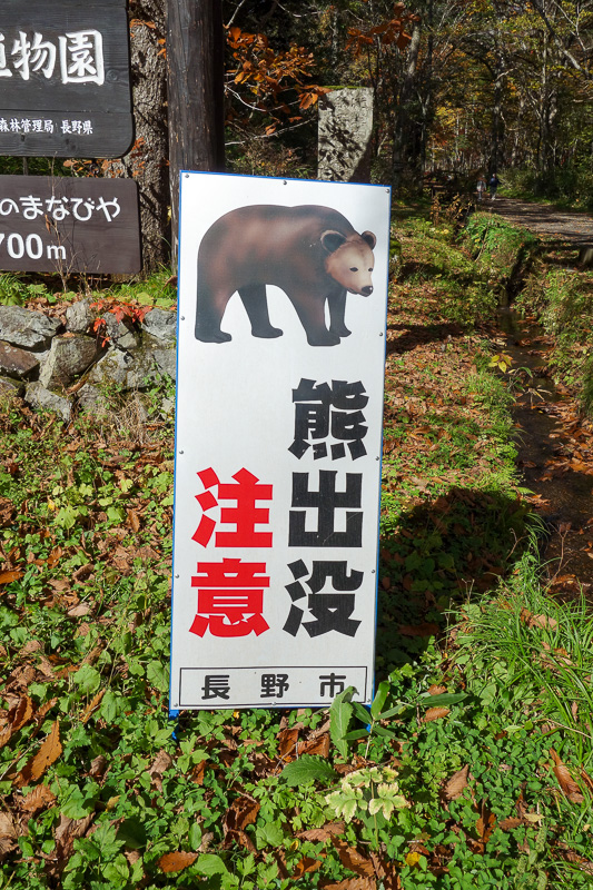 Japan-Nagano-Togakushi-Hiking-Autumn Colors - There really were signs everywhere advising you that you will get eaten by a bear.