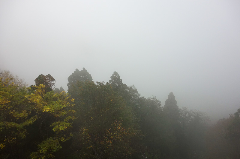 Japan-Tateyama-Kurobe-Alpine-Hiking - We were now in the fog already. However it did not rain all day.