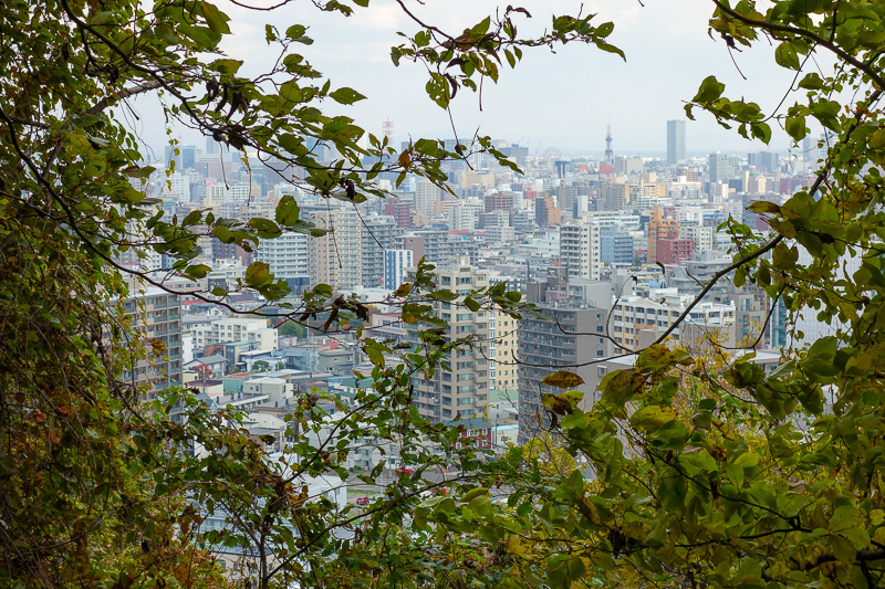 Japan-Sapporo-Hiking-Mount Moiwa - It may have been the wrong path but it does have a good view.