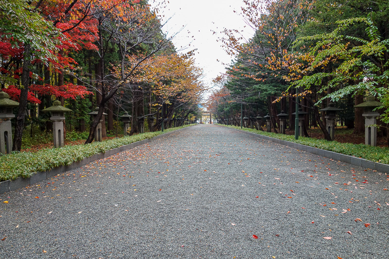 Japan-Sapporo-Zoo-Autumn Colors-Rain - The path to the main shrine is past peak leafery.