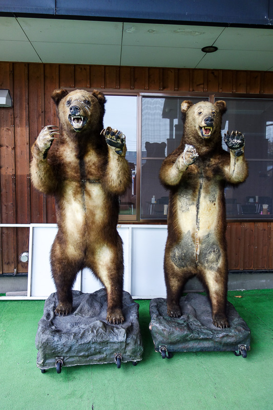 Japan-Hakodate-Onuma Koen-Snow - These are real dead Hokkaido bears taxidermied however you spell that. They are taller than me. I was confident there were none roaming around this AA