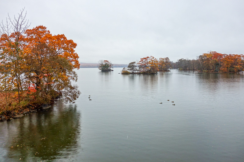 Japan-Hakodate-Onuma Koen-Snow - There are also ducks. On nicer days most people row a boat around and get off on the little islands and cough up a lung whilst eating cuttlefish and c