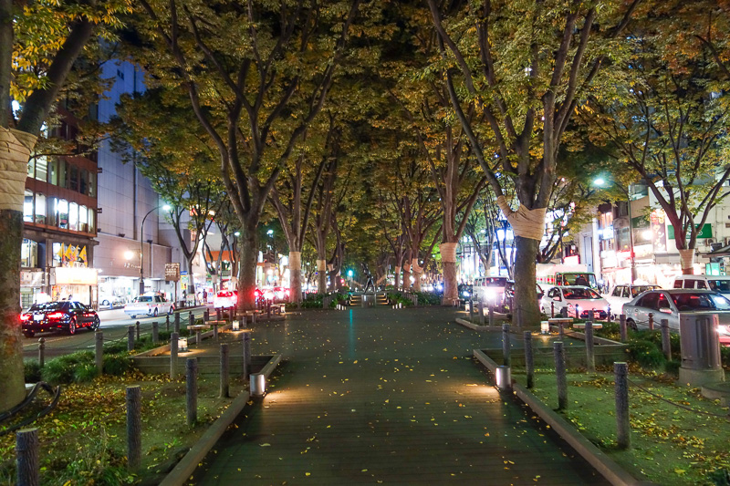 Japan-Sendai-Shopping Street - You can also stand in the middle of the road and look at the leaves, only they are not lit up here, no colors of the night.