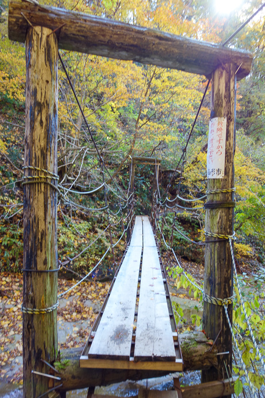 Japan-Sendai-Omoshiroyama-Hiking-Yamadera - And a fun bouncy suspension bridge, with some of the rotten wood replaced, but not all of it. How do they decide when its rotten enough to replace? Wh