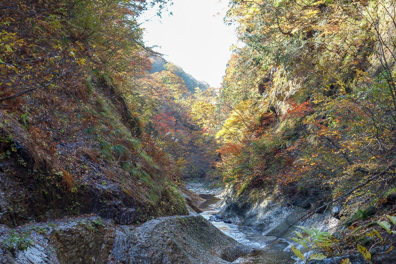 Japan-Sendai-Omoshiroyama-Hiking-Yamadera - Cameras still do not do bright sky and dark ravine anywhere near as well as the human eye.
