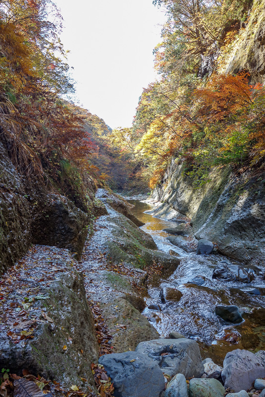 Japan-Sendai-Omoshiroyama-Hiking-Yamadera - Nice path.
