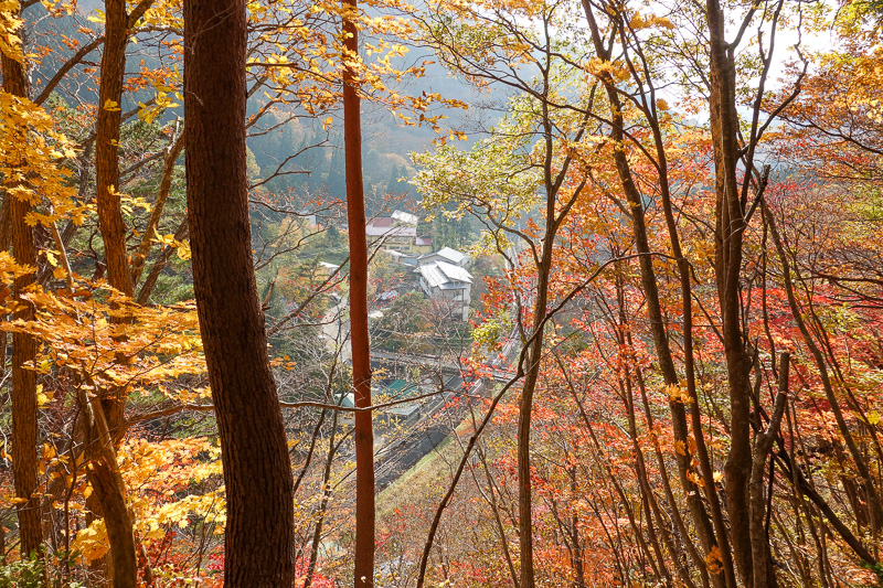 Japan-Sendai-Hiking-Omoshiroyama-Autumn Colors - Lets try that again
