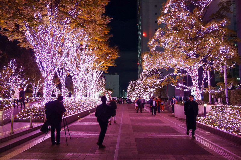 Japan-Tokyo-Shinjuku-Food-Ramen - And the last photo for tonight, avenue of pink lights for no apparent reason.