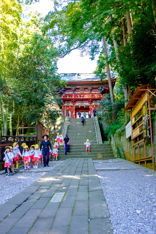 Japan-Shizuoka-Shrine-Kunozan Toshogu-Hiking - Here are some school kids coming back from visiting the temple. Theres thousands of them with color coded hats. They know to remove their hats and bow