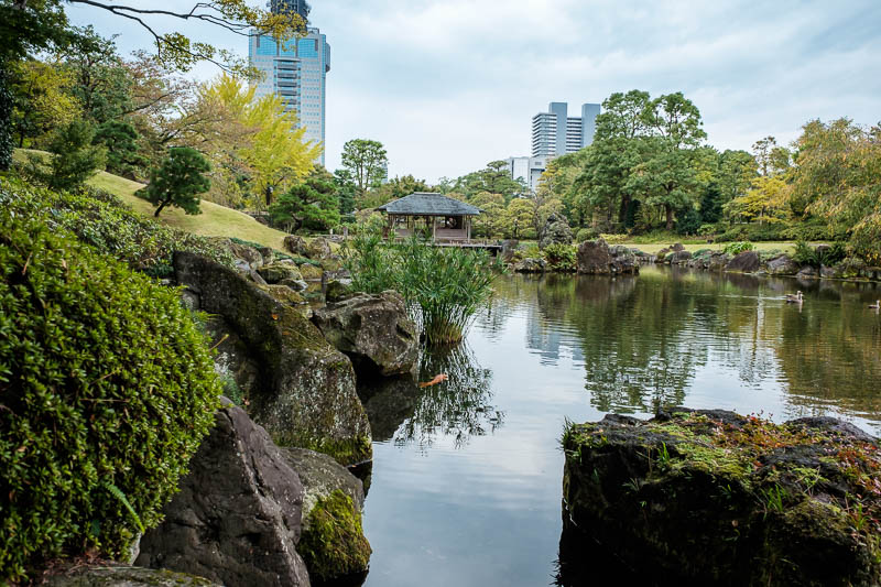 Japan-Shizuoka-Kyoto-Shrine-Garden-Train - The modern buildings in the background make this shot all the better.