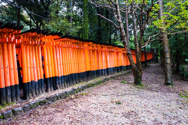 Japan-Kyoto-Fushimi Inari-Shrine-Rain - OK, some people were just going into this bit, and thats all, about one hundred metres from the station. This meant they were standing in there with u
