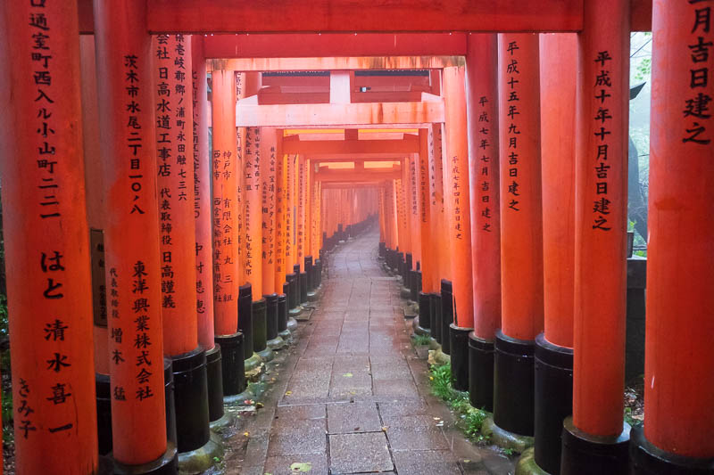 Japan-Kyoto-Fushimi Inari-Shrine-Rain - Rain concentrator