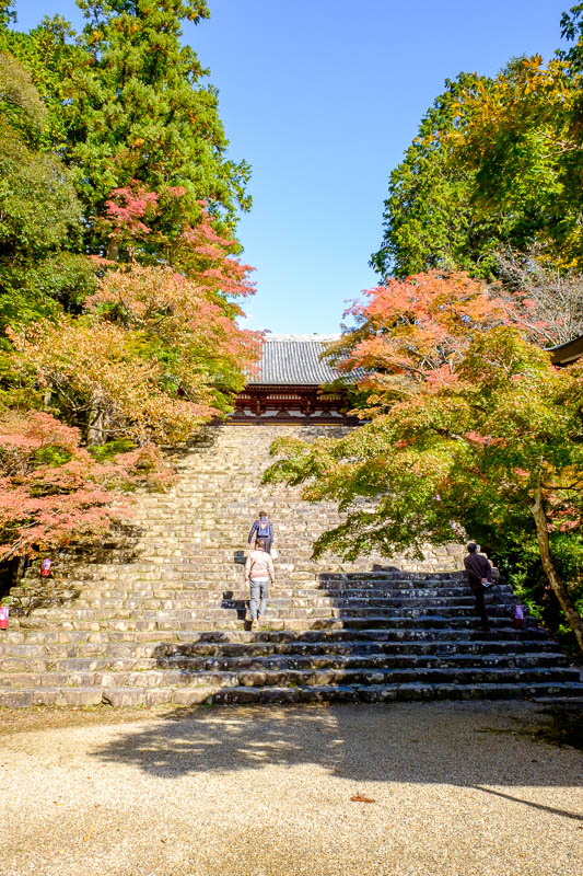 Japan-Kyoto-Hiking-Mount Atago-Arashiyama - Its not peak color, but already quite colorful. Lots of old people are here. Old German people filled the bus, they seem to have a thing where they ge