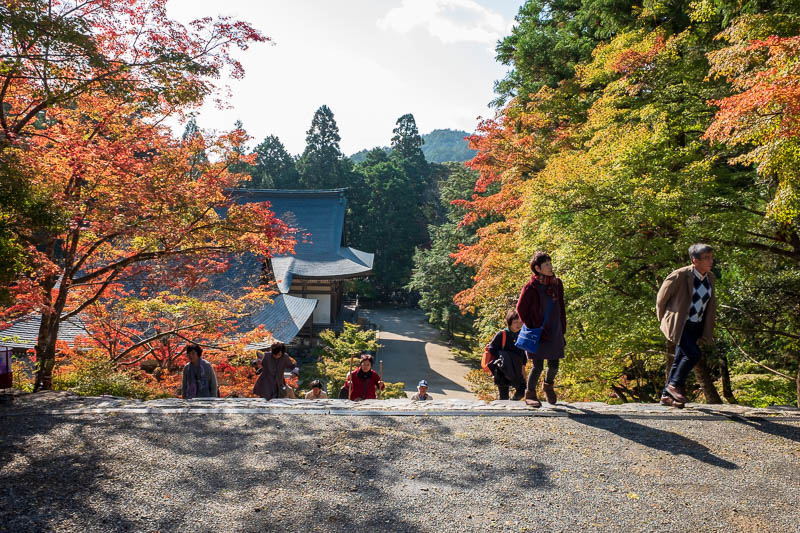 Japan-Kyoto-Hiking-Mount Atago-Arashiyama - Nice colors, I will say that a lot today.