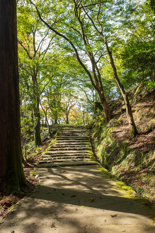 Japan-Kyoto-Hiking-Mount Atago-Arashiyama - I nearly missed the best bit. I decline the map at the admission booth, but when I went back out I asked where the thing I was here for is, and took a