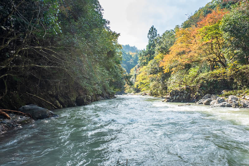 Japan-Kyoto-Hiking-Mount Atago-Arashiyama - The light was really tricky, but I think some of the photos are OK. I took a lot, many appear similar and were removed.