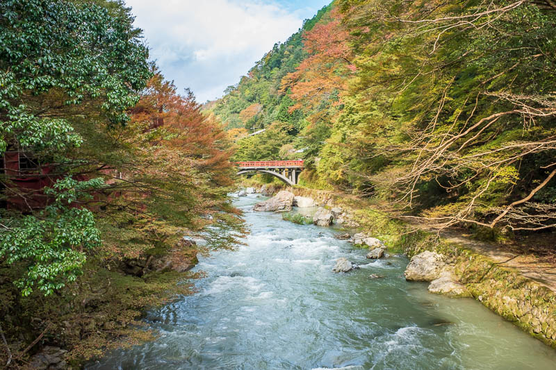 Japan-Kyoto-Hiking-Mount Atago-Arashiyama - Although I did photograph this one twice, I almost managed to hide the sheds behind it.