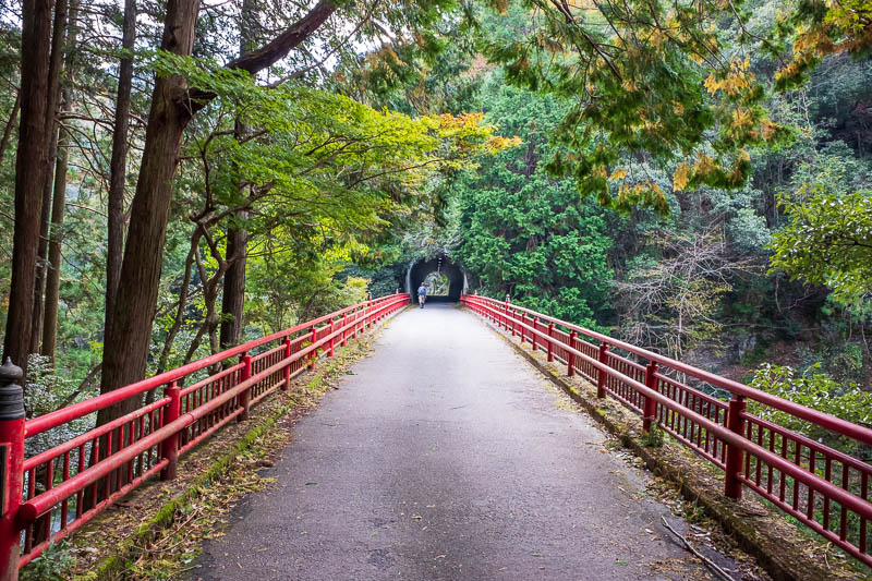 Japan-Kyoto-Hiking-Mount Atago-Arashiyama - Red bridge plus tunnel, what a combo!