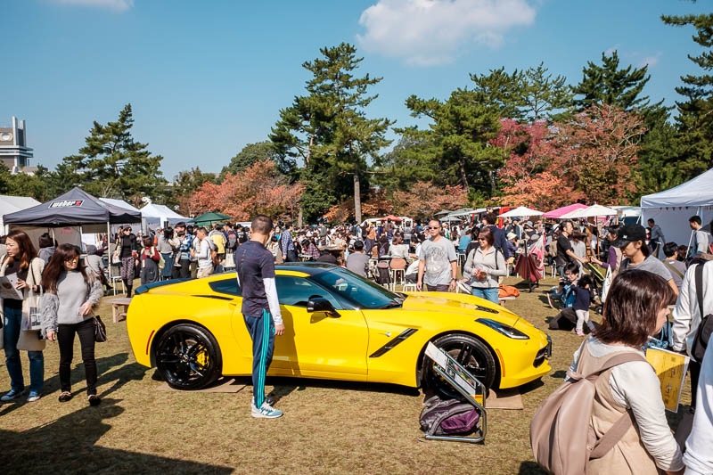 Japan-Nara-Hiking-Deer - More fairs, selling corvettes.