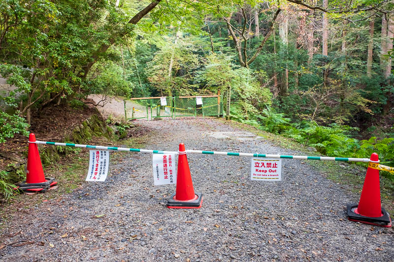 Japan-Nara-Hiking-Deer - TRAGEDY, thwarted again. Me and lots of other people expressed our disgust, path closed. I bet it was perfectly fine to climb over the fallen tree. I