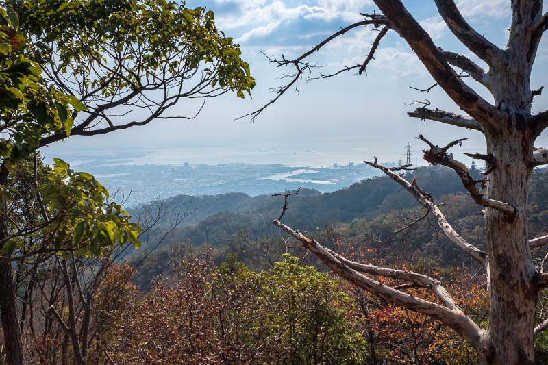 Japan-Kobe-Hiking-Mount Rokko - Nice view though, lots of color today, but I didnt photograph it well.