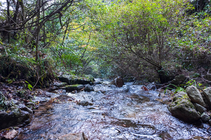 Japan-Kobe-Hiking-Mount Rokko - Heres a stream I had to cross, I never saw another person for 3 hours on the way down! Hence the 'first everybody, then nobody' title of todays post.