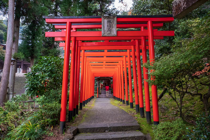 Japan-Gifu-Rain-Fog-Castle-Garden - They have decided to try and compete with Kyoto with the red gate tunnel. Weak effort, try a different color, be unique.
