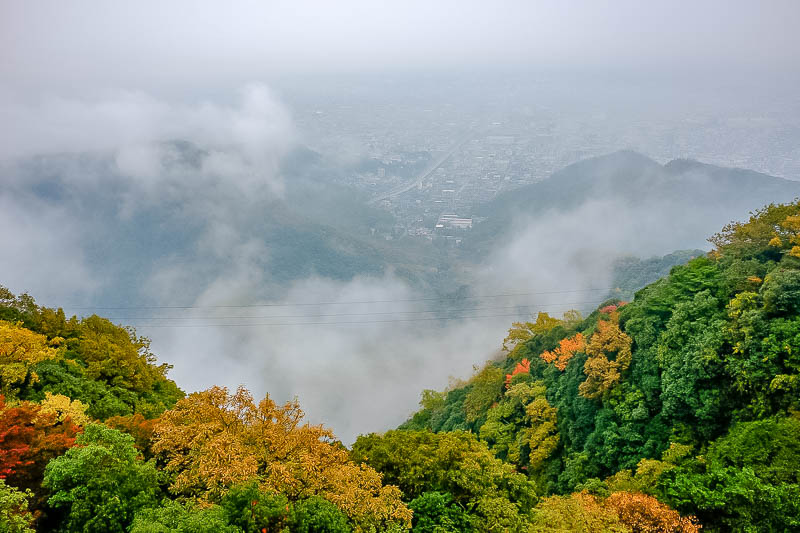 Japan-Gifu-Rain-Fog-Castle-Garden - Now we do the view, of the fog! And also those damn wires.