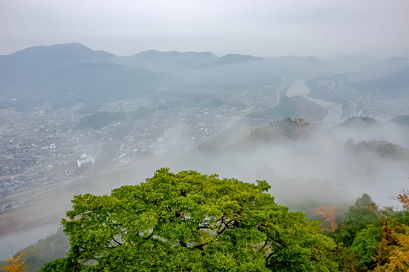 Japan-Gifu-Rain-Fog-Castle-Garden - More fog, and the cities famous river. I know its famous, the station has an information board telling me the city is famous for the river and the cas