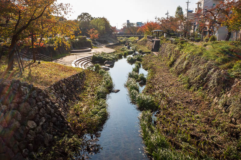Japan-Gifu-Yokohama-Shinkansen - I got up early and walked around Gifu. This open sewer was quite picturesque in the early sun.